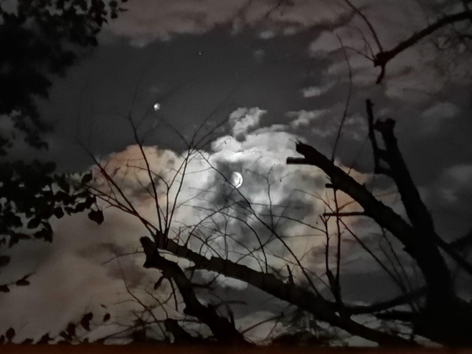 Moonlight Seranade - Karen