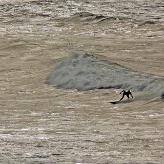 Surfing on Silver - Carol.jpg