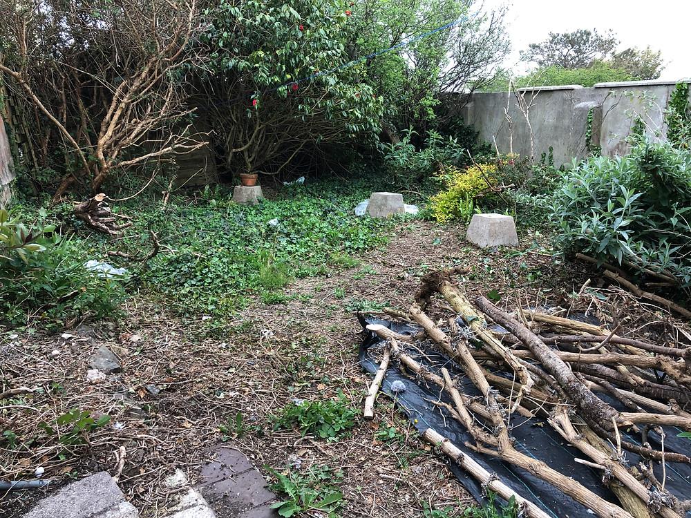 Keiths garden