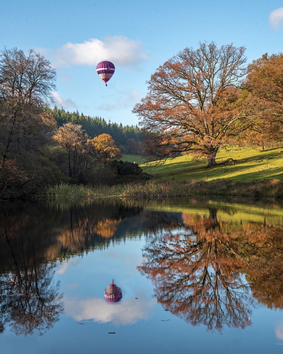 Winner - Stourhead Autumn - Derek