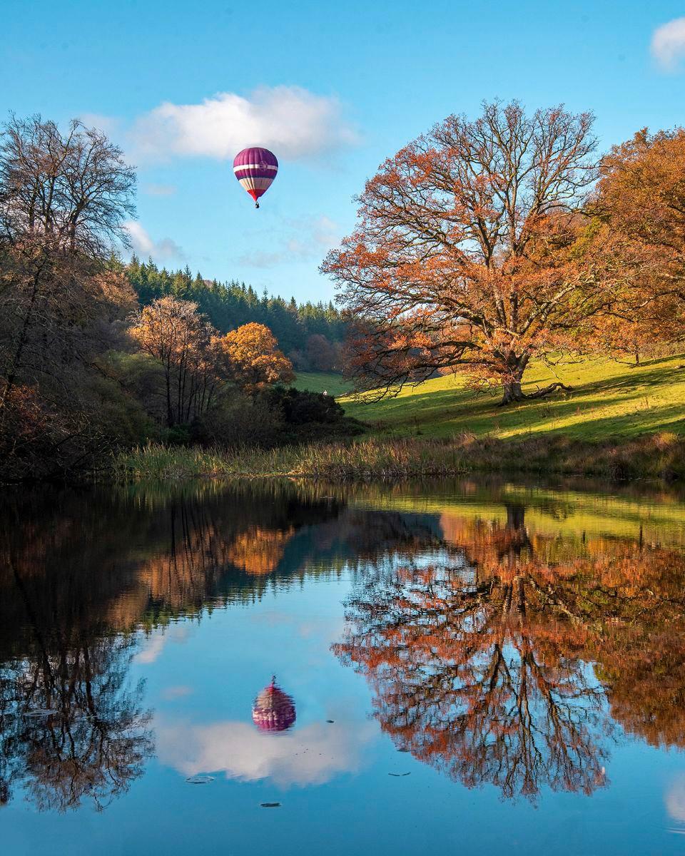Stourhead Autumn by Derek