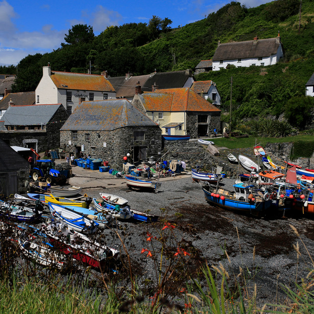 Cadgwith - Wendy.JPG