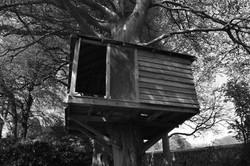 Mono Tree House - Mandy
