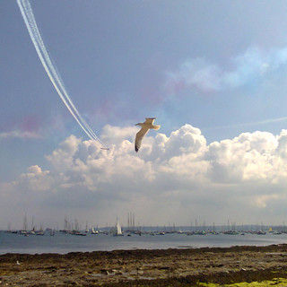 Competing in the sky - Maru.jpg