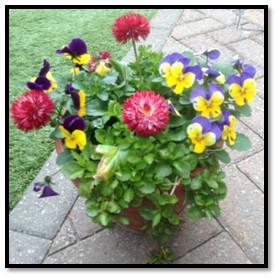 Flowerpot rule of three