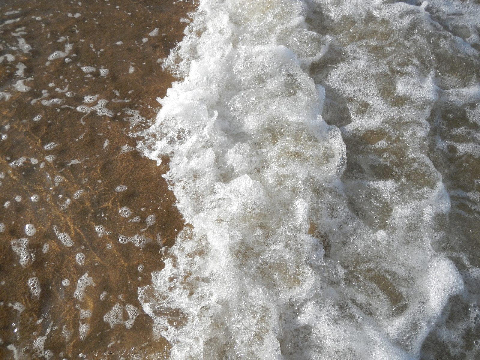 A bit of foam - Maru