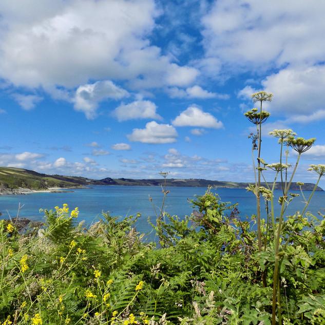 A Cornish Seascape - 1.jpg