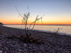 KF2 Digital - Dawn on the beach - Claire