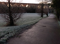 Icy morning - Marcus