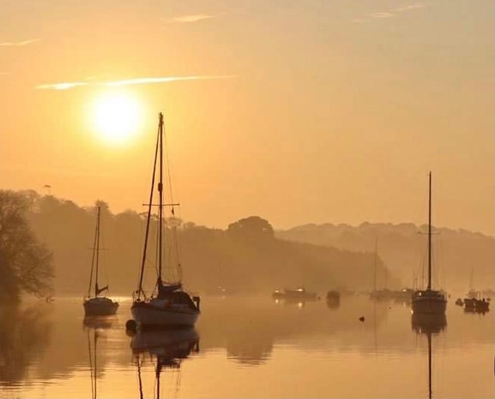 """Golden Morning"" by Liz Richardson"