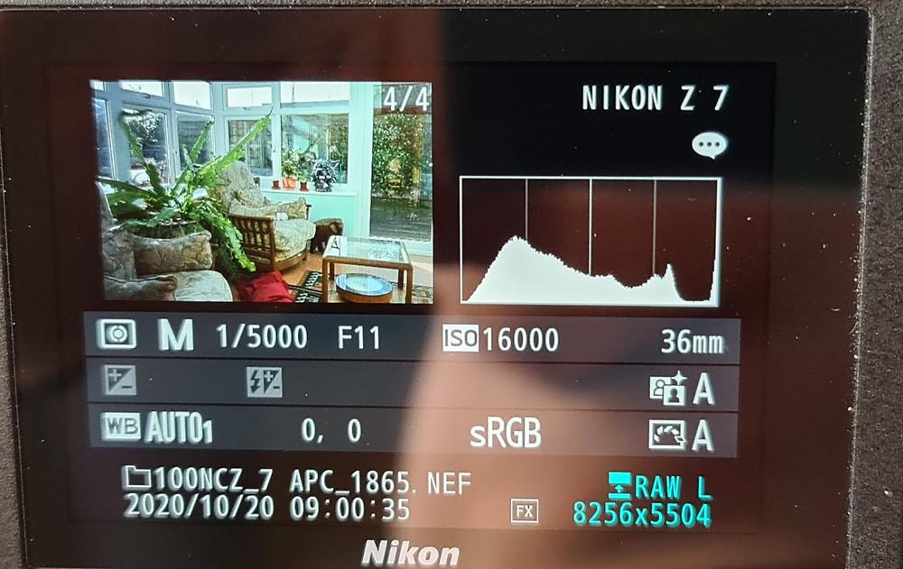 Check the camera display