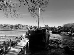 Mono Along the Riverbank -Janet