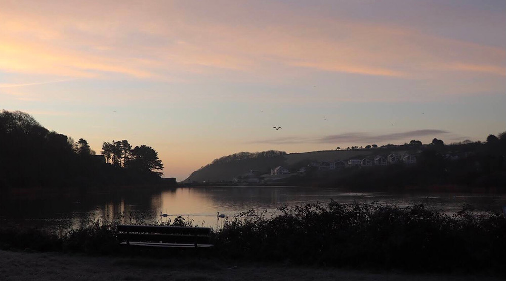 Joint 3rd Swan Pool at Dawn by Liz Richardson
