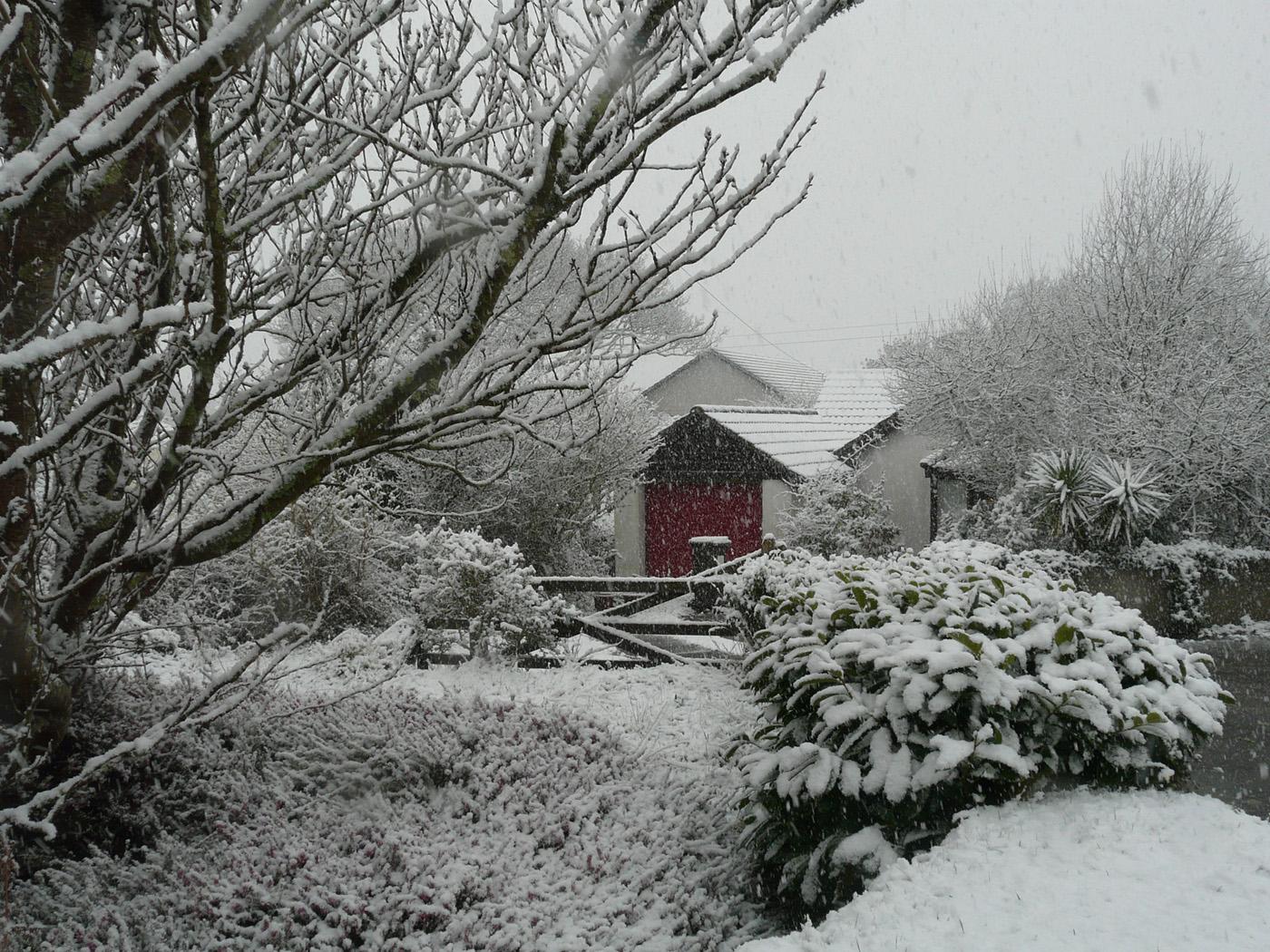 A Garden Winterland - Eve