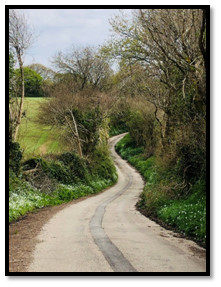 Long and winding path
