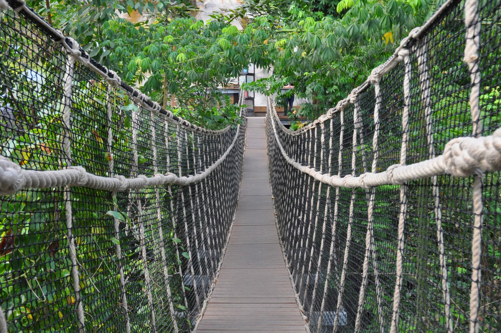 KF2 Off Camera - A safe rope bridge - Ma