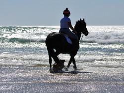 Riding to the sea - Maru