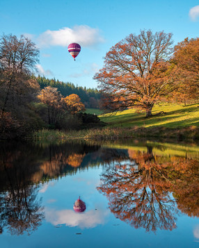 Winner - Stourhead Autumn - Derek.jpg