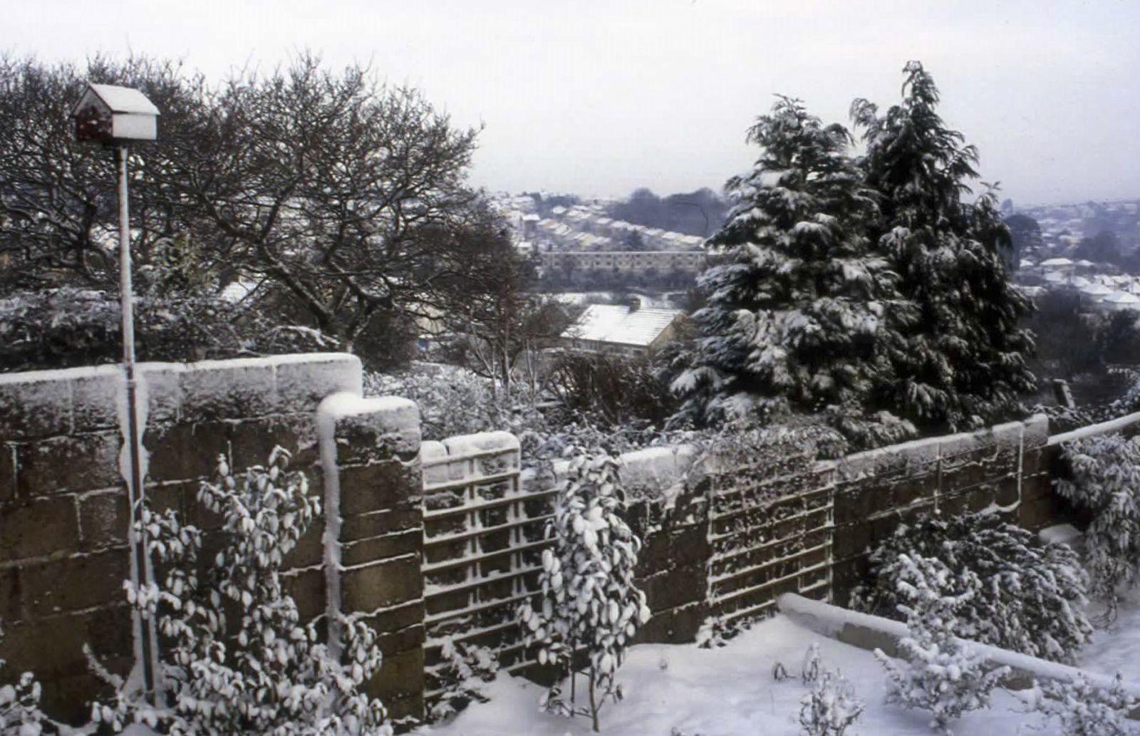 A Winter Scene - Julia