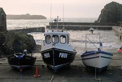 Mullion Harbour - Derek