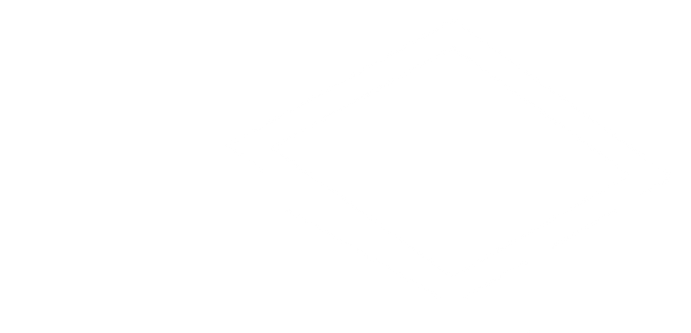 White Big Logo-01.png
