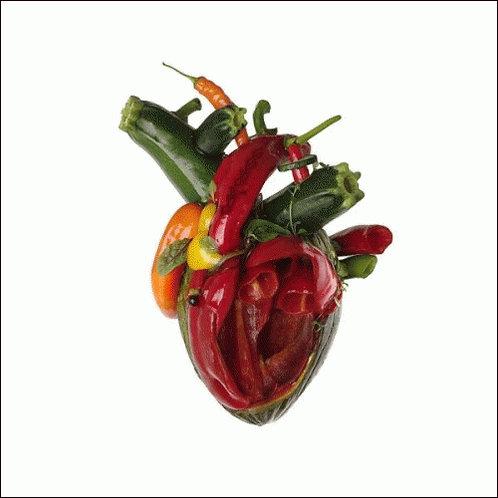 CARCASS Torn Arteries CD DIGI