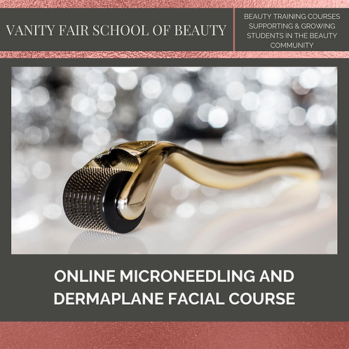 Dermaplane and Micro-Needling Facial - Online eCourse