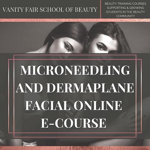 Dermaplane and Micro-Needling Facial - Online eCourse