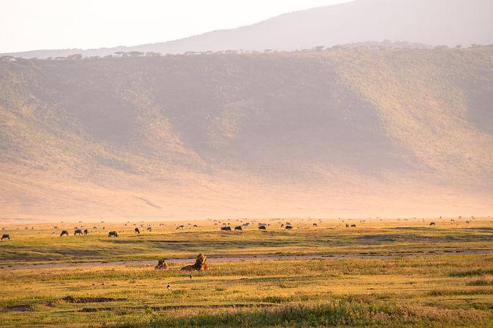 Ngorongoro Crater sunrise