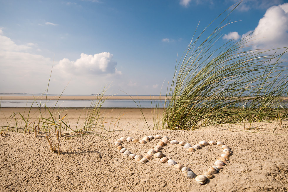 Holiday love: wonderful dune beach on th
