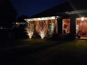 Landscape Lighting 3.jpg
