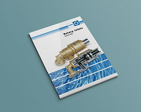 DQ Brochure.jpg