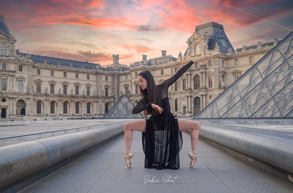 Océanne Louvre 8732 logo-.jpg