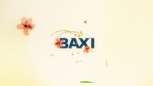 baxi_colours_06.jpg
