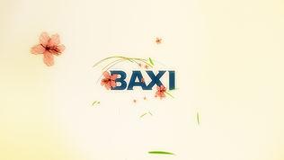 baxi_colours_06.jpg