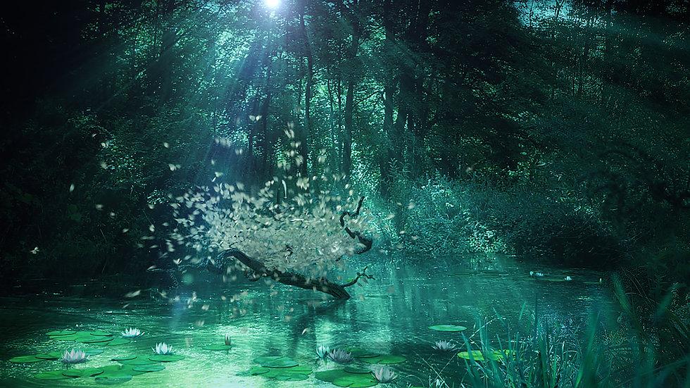 Butterfly_Pool_03.jpg