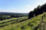 valley 1.NEF.jpg