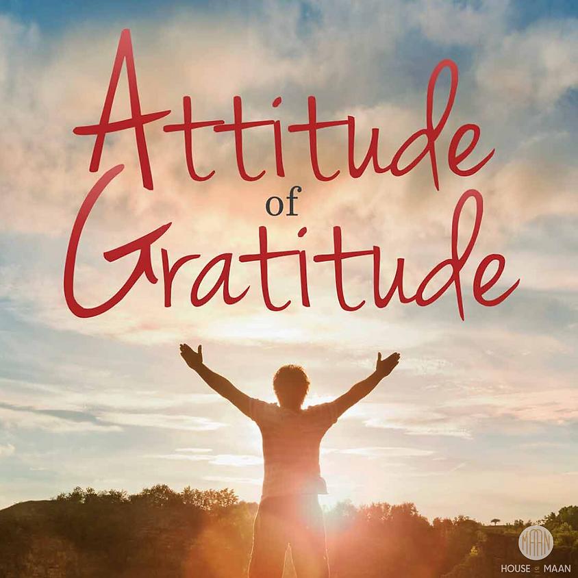 The Power of The Gratitude Walk - Vlaardingen