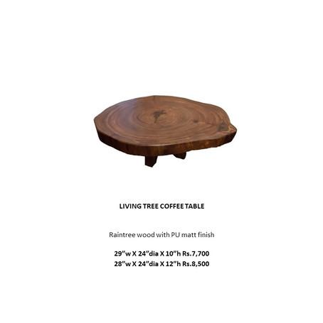 RAIN TREE TABLE.jpg