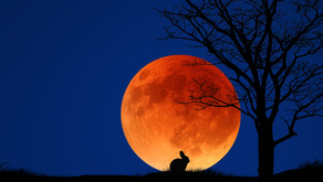 La Pleine Lune du Changement
