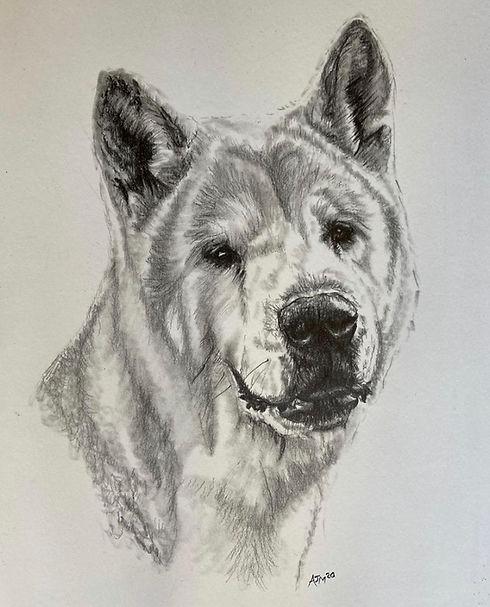 Dog Commission 3.jpeg