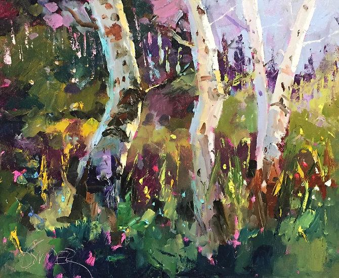 Aspen Glow | Bob Snider | Oil on Canvas