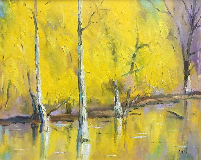 Willows | Ron Almond | Oil on Canvas