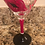 Thumbnail: Kiss me martini glass
