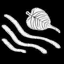Dhammadharini-Logo-White.png