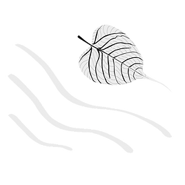Dhammadharini-Logo-White_edited.png