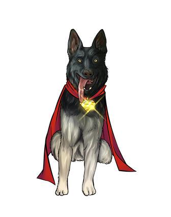 Pet superhero portrait | cat and dog custom drawing