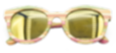 00001SUNGLASSES.png