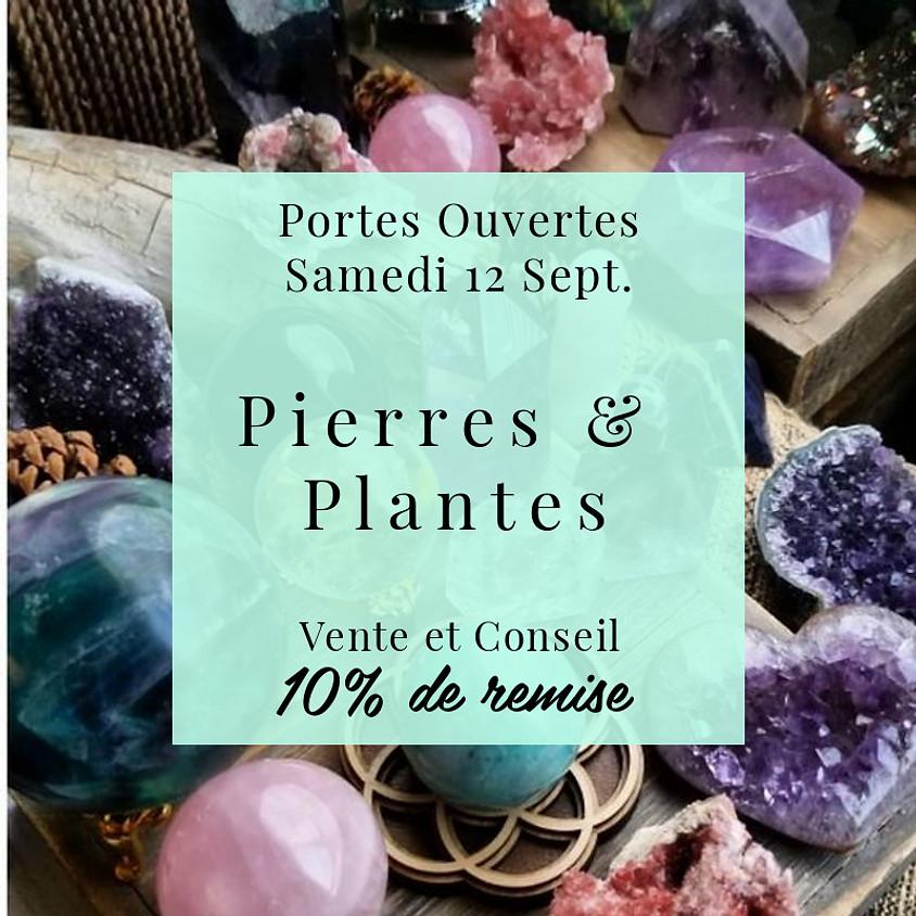Journée Portes Ouvertes : Pierres & Plantes