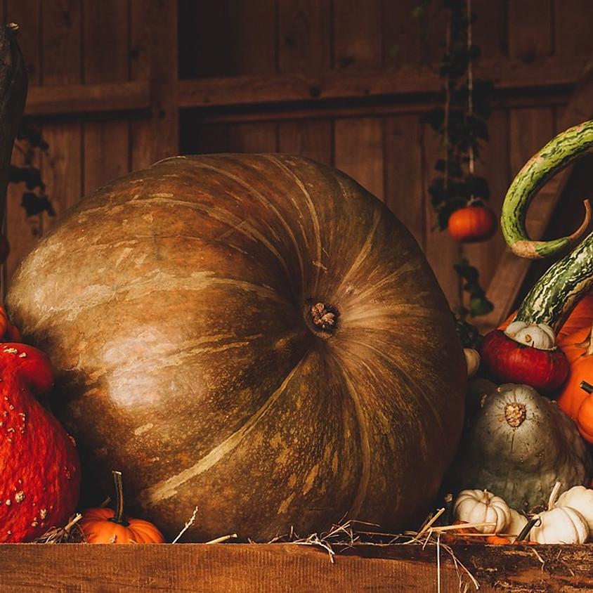Cercle des Gardiennes de la Terre - Samhain